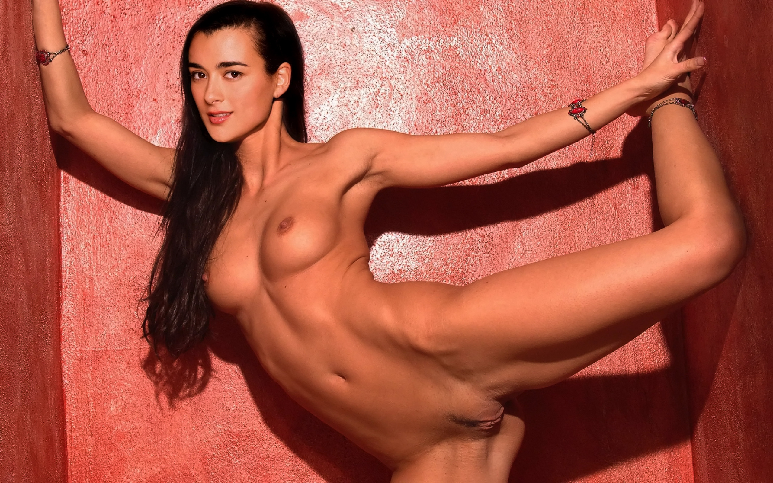 The Girls From Ncis In The Nude