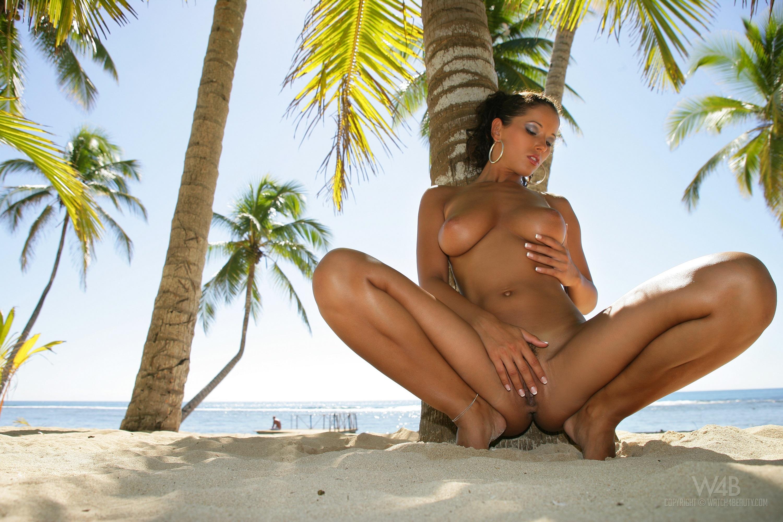 Секс у пальмы 3 фотография