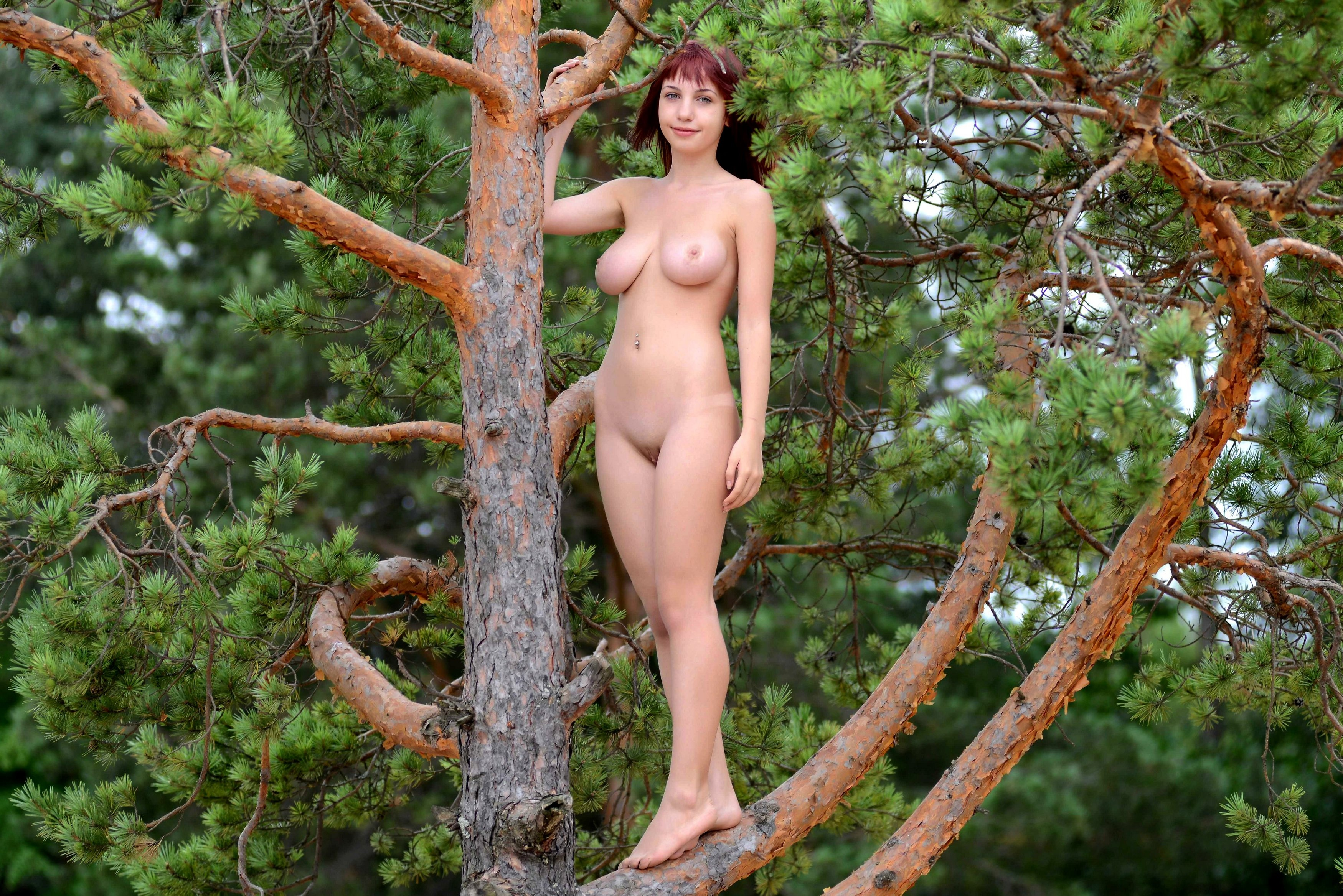 Sense. dark tree naked woman apologise, but