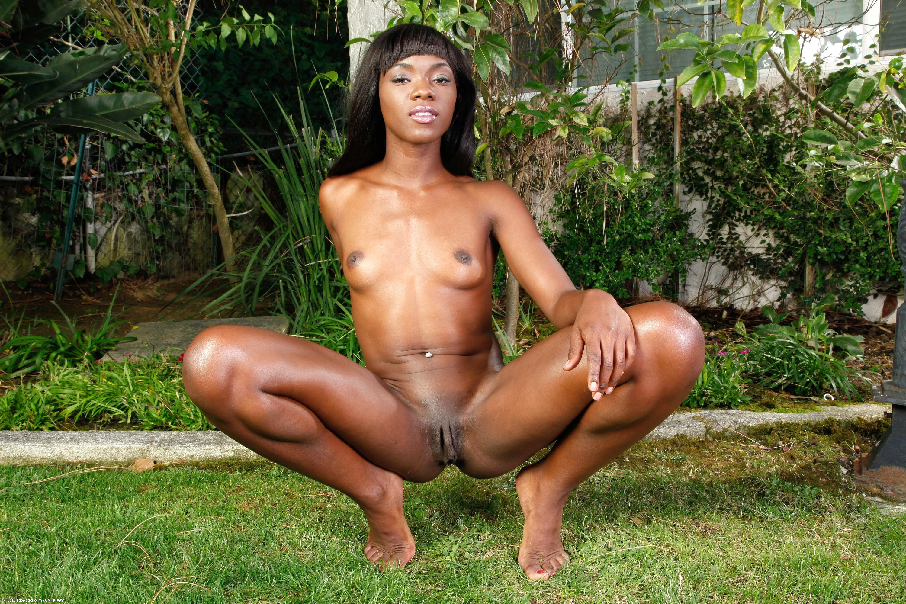 Wallpaper ana foxxx, brunette, black girl desktop wallpaper - XXX walls -  ID: 73519 - ftopx.com