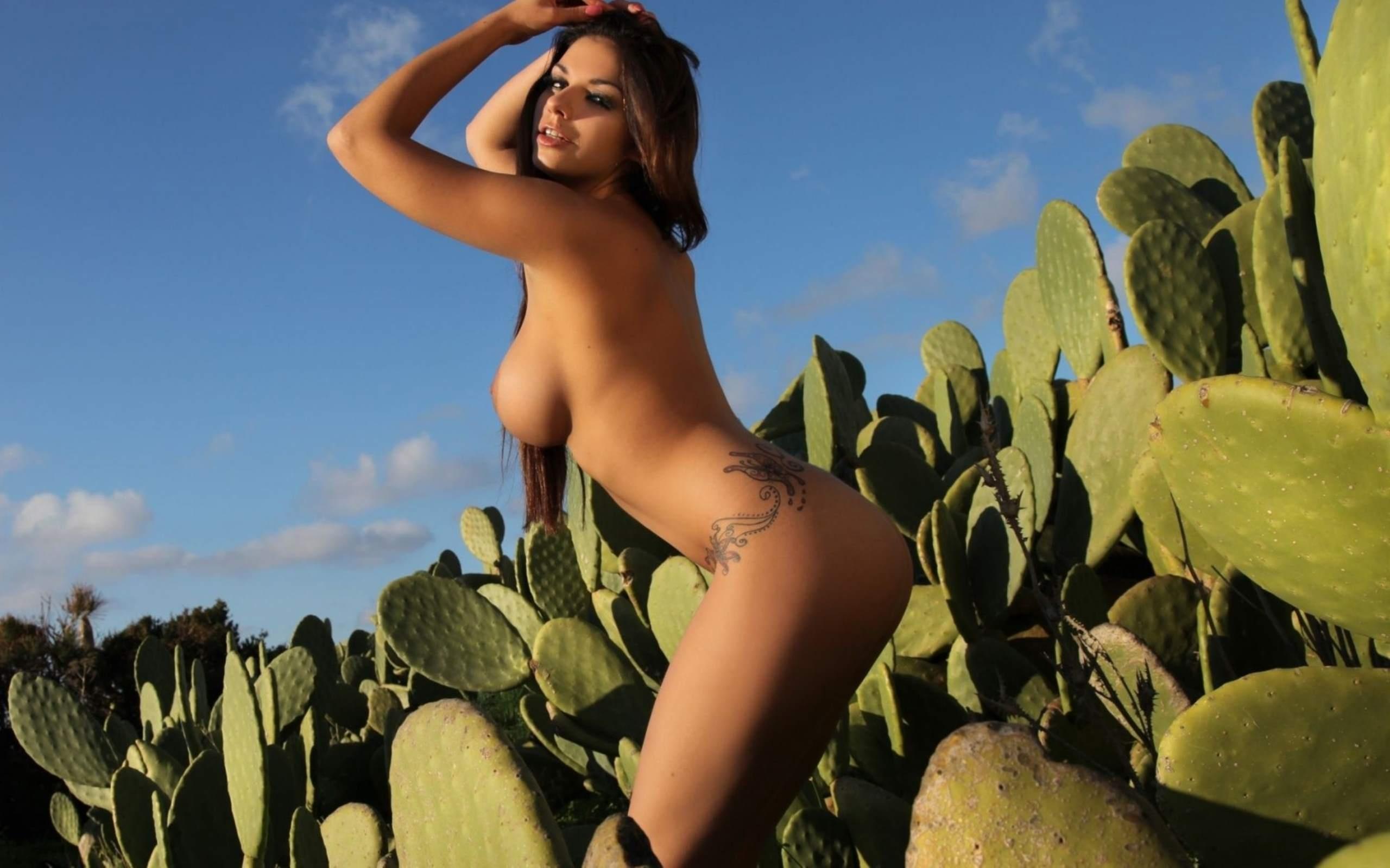 Nacktes Mädchen Kaktus — foto 10