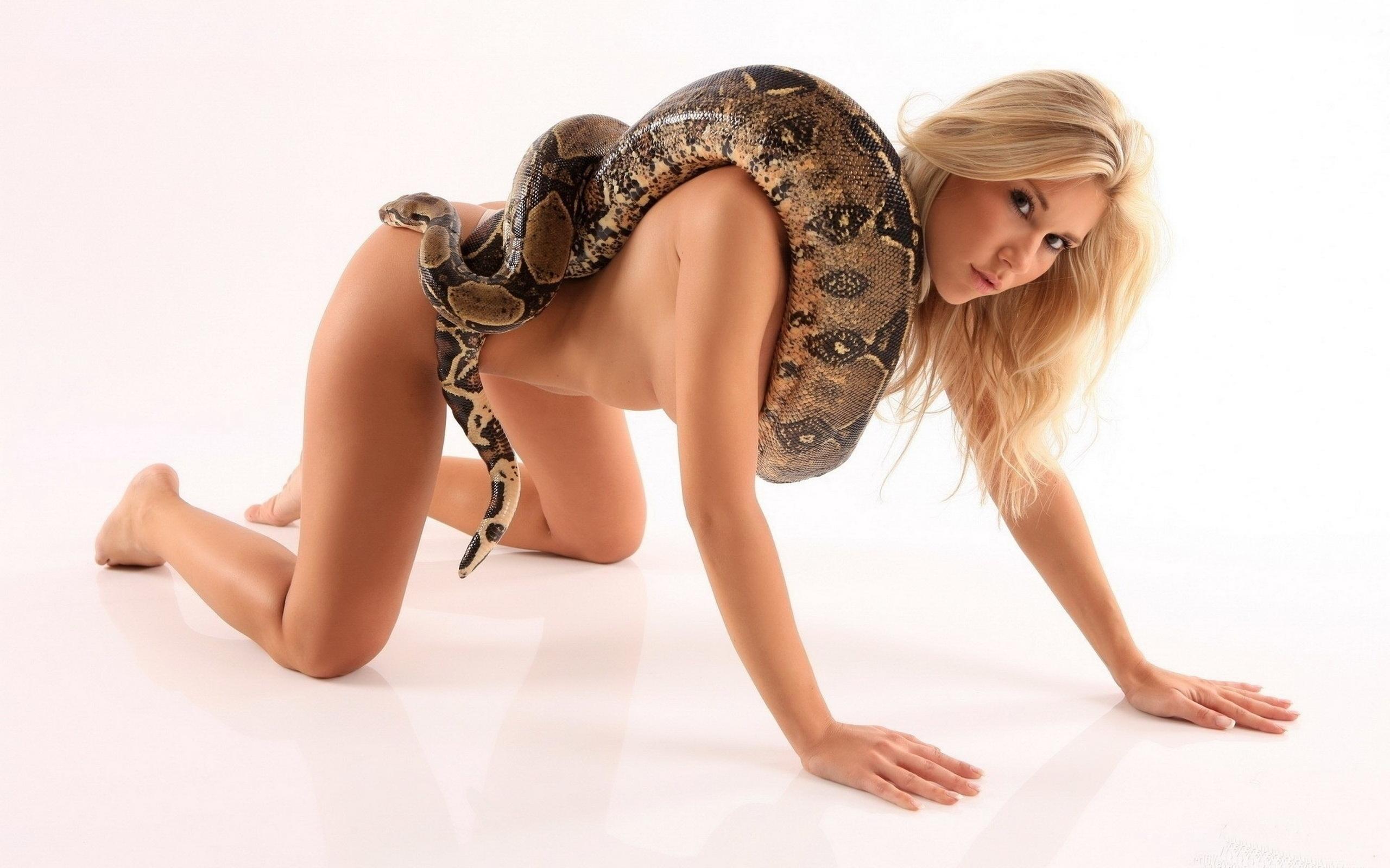 hot girl fucking snake