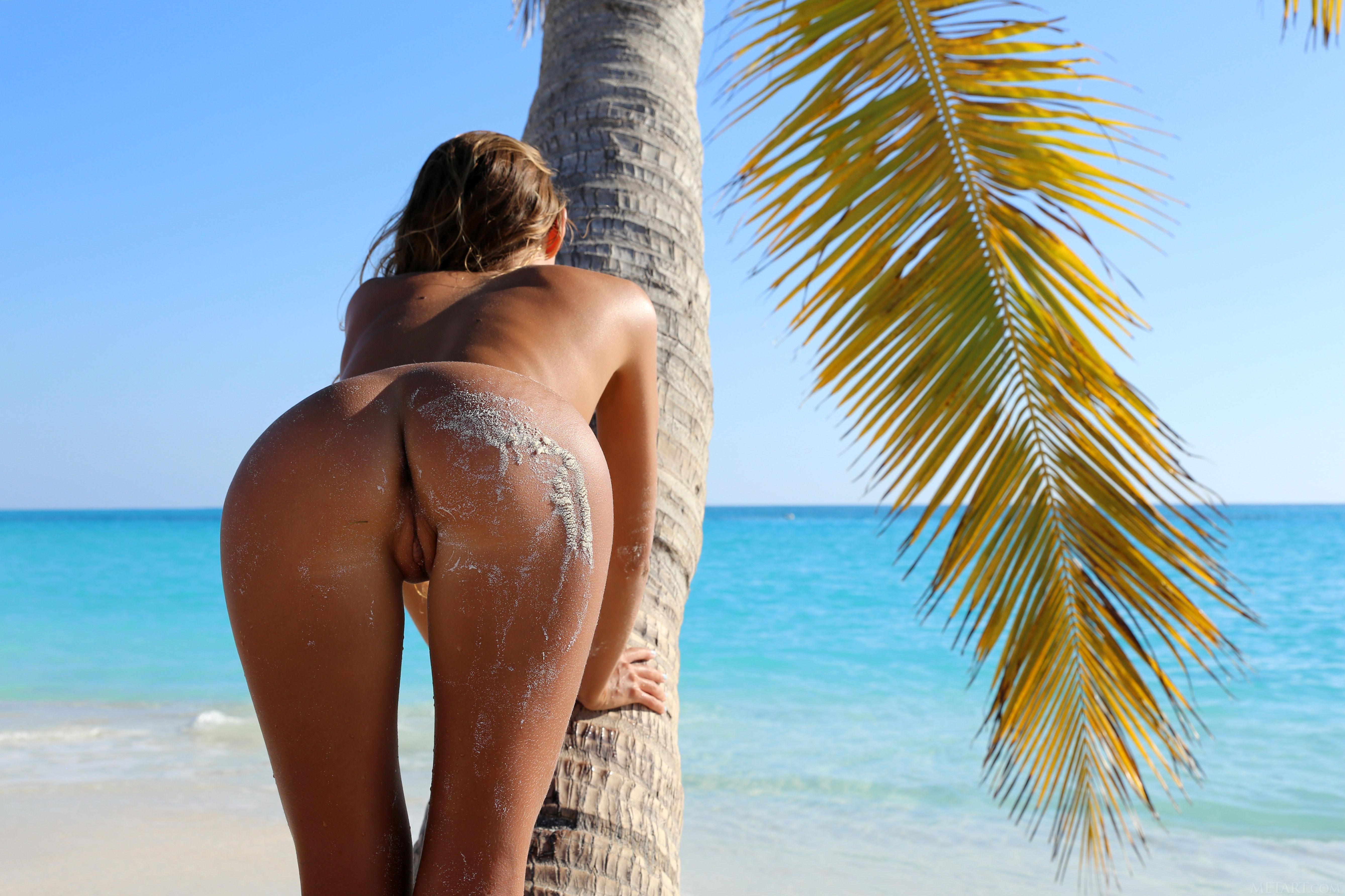 Palm beach pussy