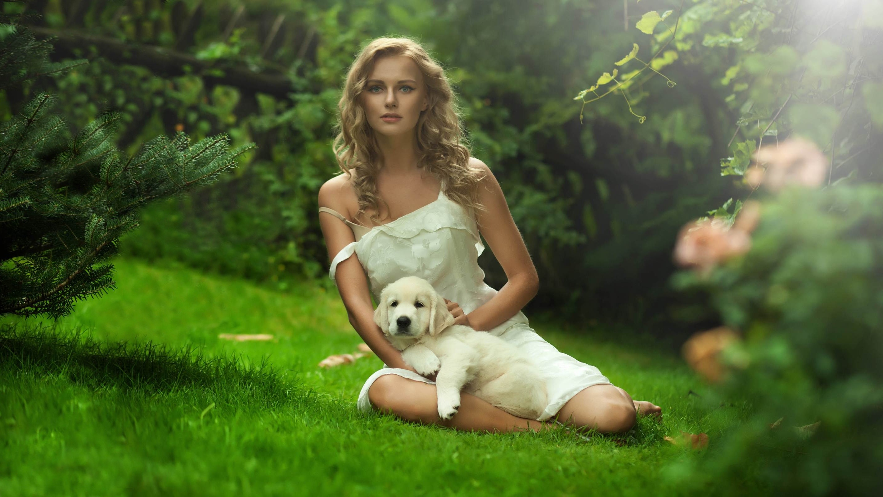 девушка книга природа блондинка белое платье скачать