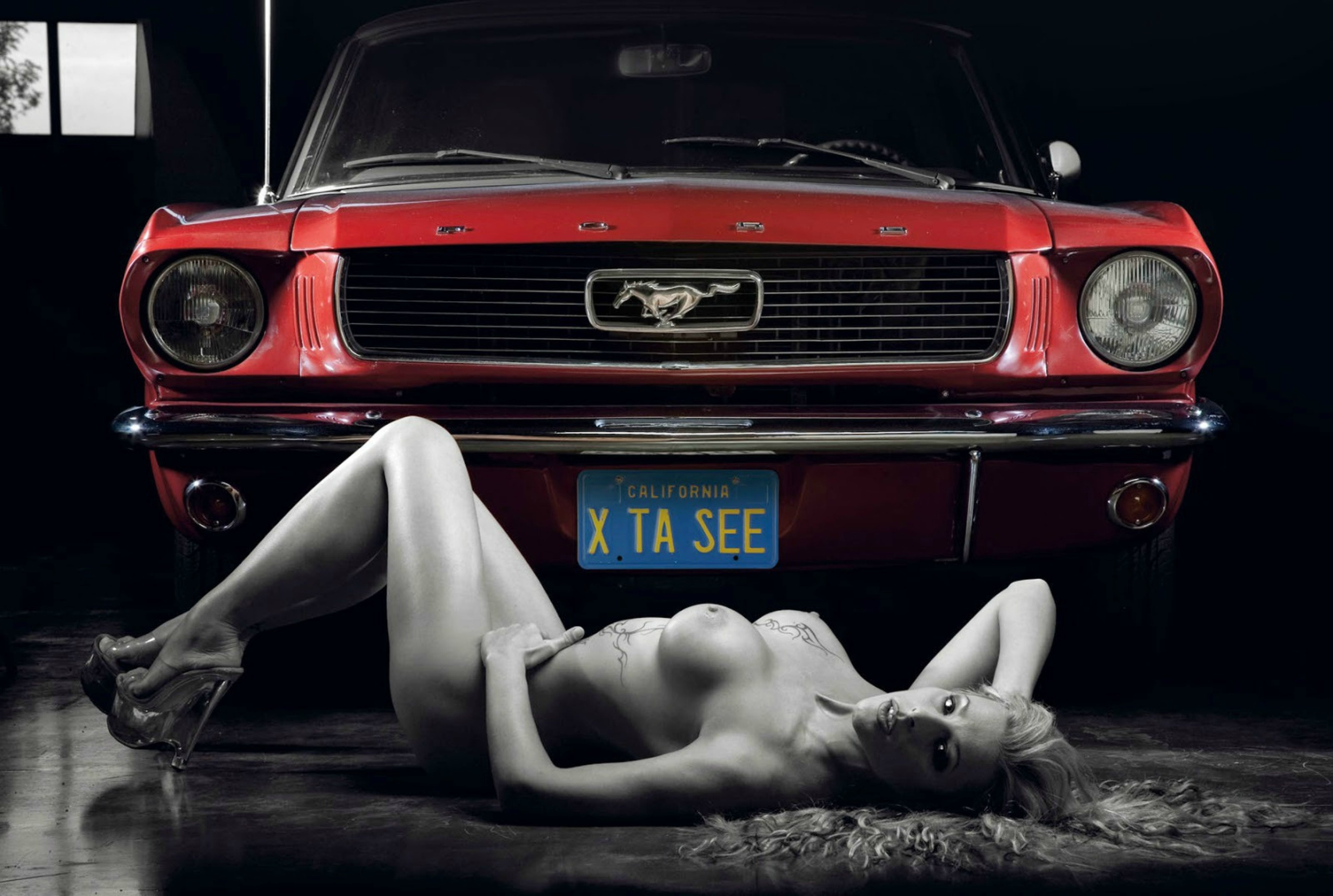 Advise Mustangs and nude models