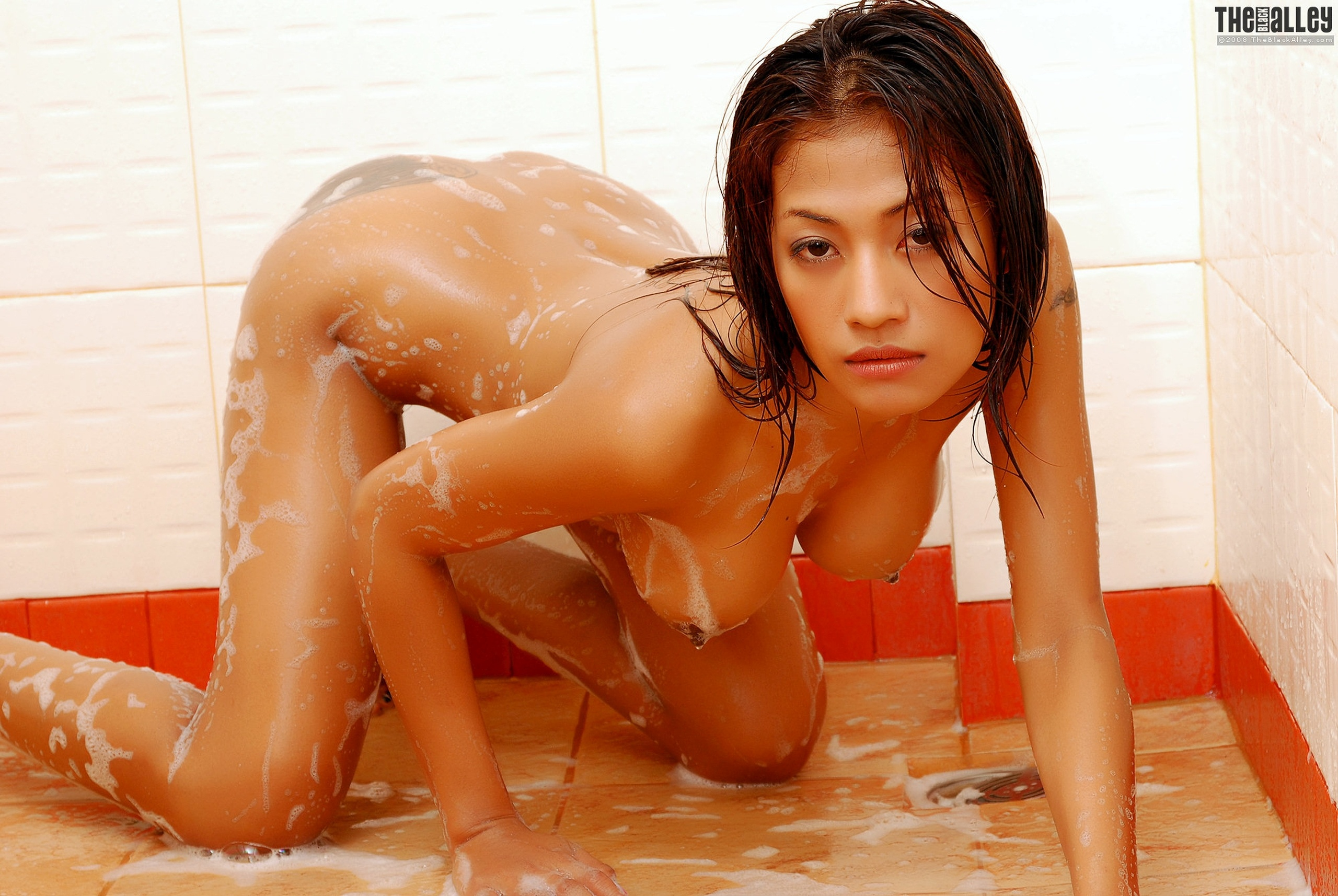 Final, Thai girl ass shower fuck opinion you