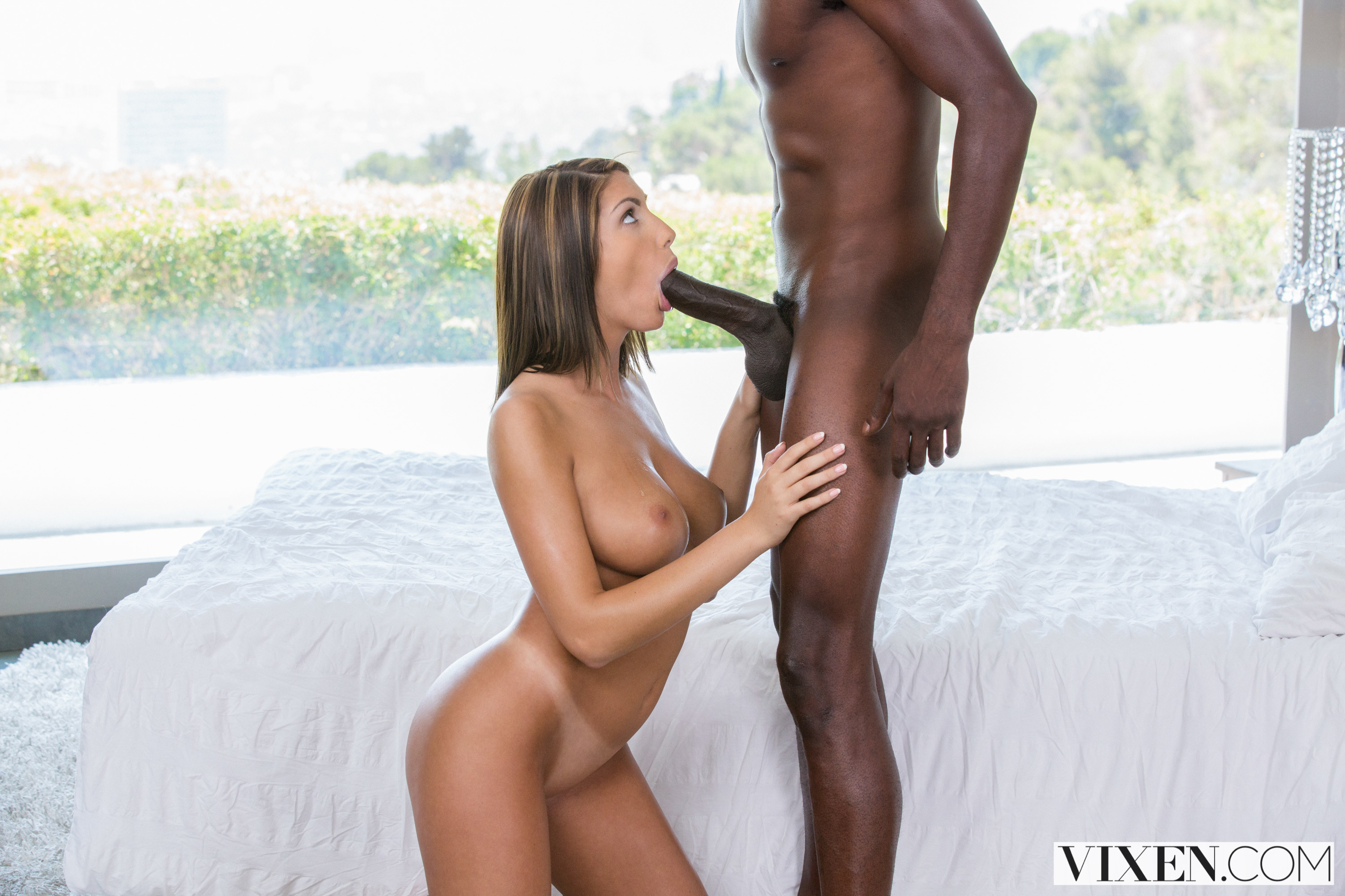 August ames blowjob huge cock