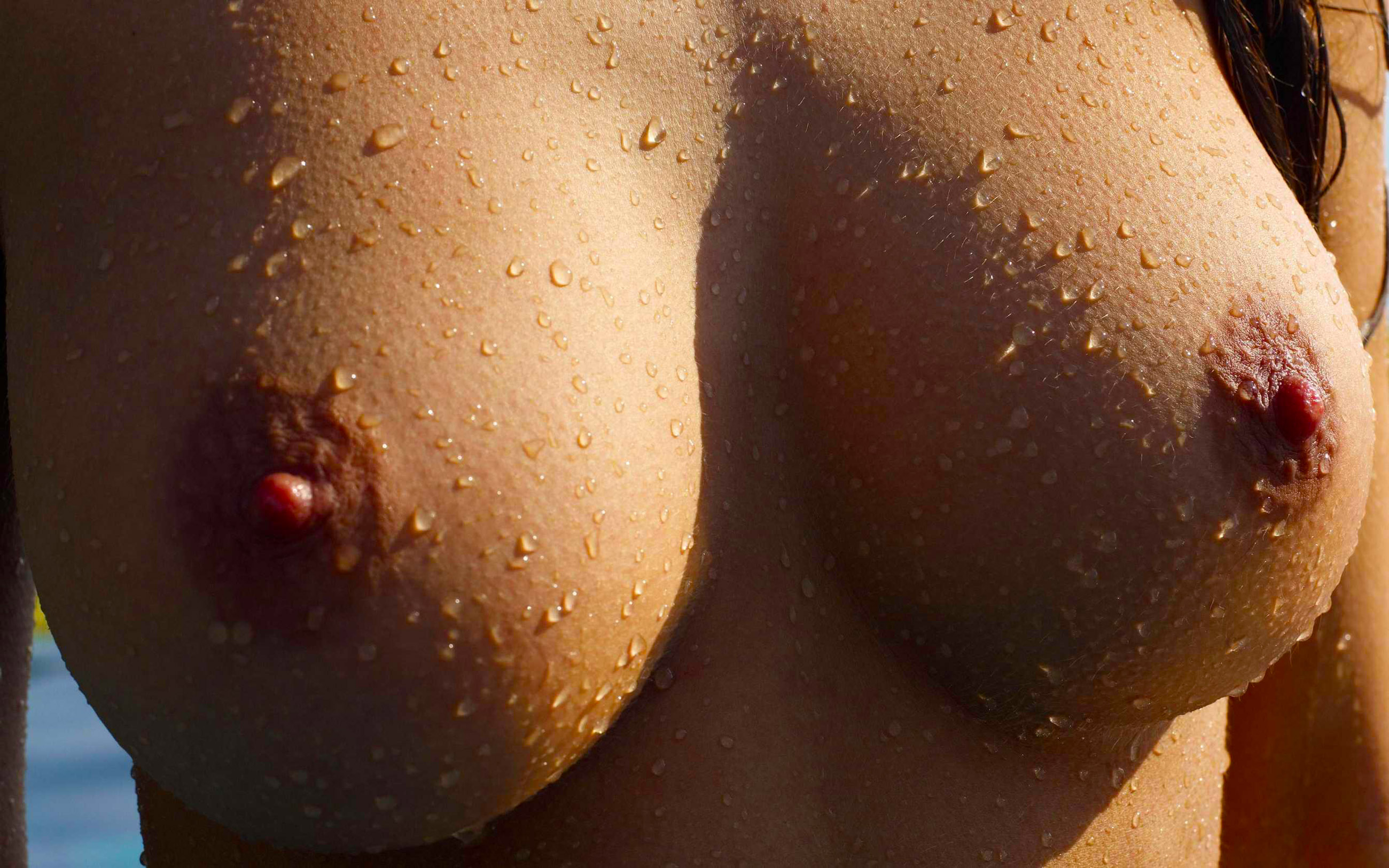 Wallpaper Boobs, Nipples, Breasts, Excited, Close-Up -5115