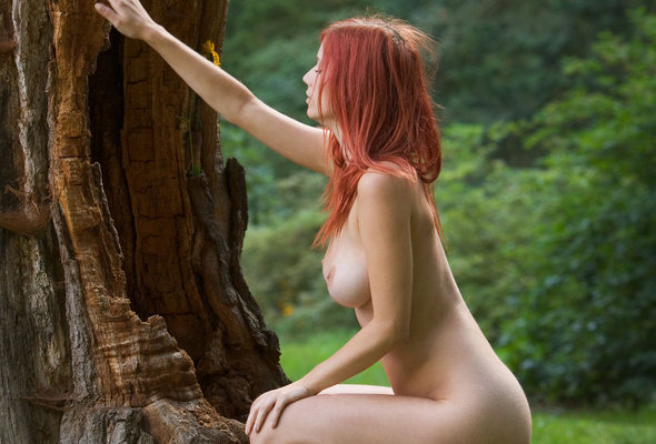 red-haired, nude, titts, ariel, redhead, boobs, outdoor, forest, ariel piperfawn