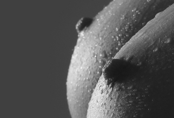 Big boobs black and white photography