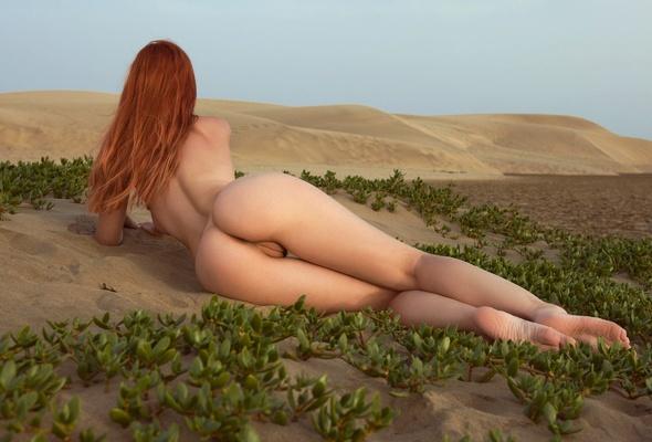 ebony women sex positions