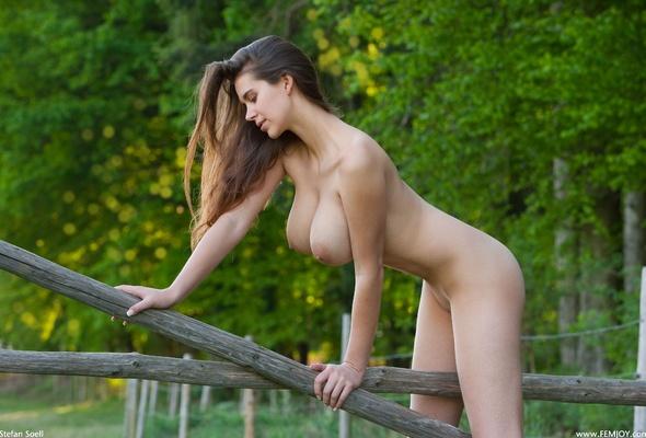 Sex Denise Milani Wonderwoman