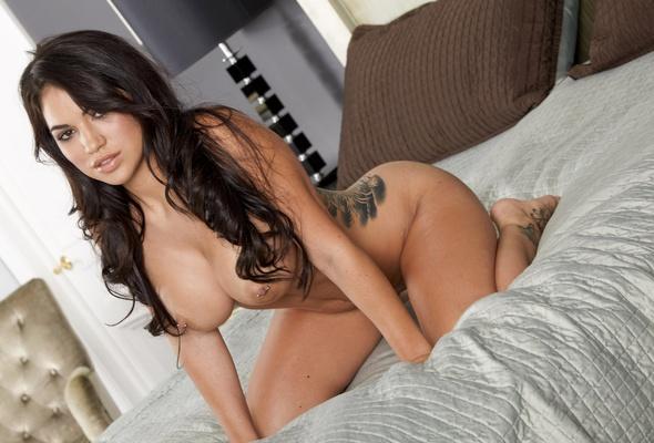 wallpaper danni kalifornia bru te sexy girl nude naked tattoo