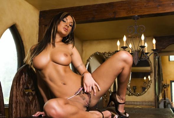 Amy reid lingerie