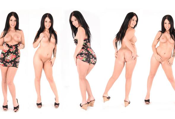 madelyn porn star