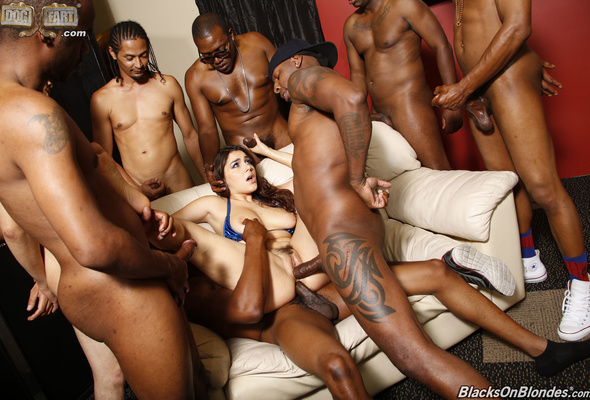 Black gangbang on white girls