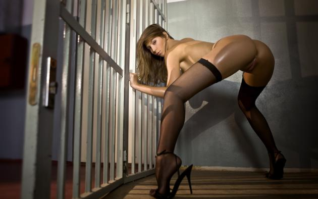 Gorgeous legs in stockings