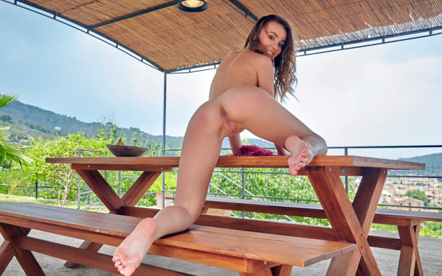 linda chase, linda, aida, linda a, dirty blonde, outdoors, table, naked, shaved pussy, labia, ass, anus, spread legs, smile, hi-q