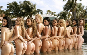 brunette, blonde, ass, smile, wet, water, group, sunny leone, ass shot, asses, group, ten, buttocks, sunny leone, charlie laine, melissa jacobs, hanna hilton, olivia kent, prinzzess, kelle marie, kimberly williams, michelle ramos, lilly ann, penthouse bab