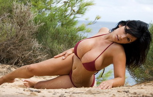 brunette, bikini, denise milani, model