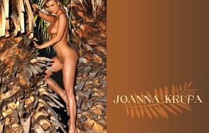 blond, nude, joanna krupa