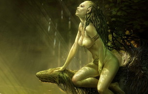 fantasy, tits, witcher 2, witcher, dreadlocks, topless, forest