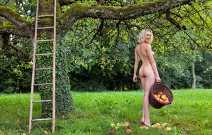 ass, dirty blonde, nude, babe, outdoor, fruits, stefan soell, katy
