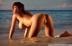 bianca beauchamp, redhead, boobs, beach, busty babe, wet, beach, sea, doggy, redhair, tits, big boobs, bombooclaaat, butt, rump, rear, rear end, backside, bottom, bum, buns, buttocks, behind, booty, arse, cheeks, badonkadonk, nice rack, backside, turd, pr
