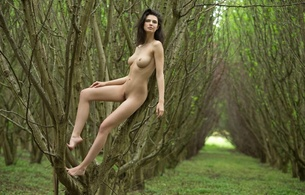 jasmine a, brunette, outdoor, tits, pussy, legs, jasmine andreas