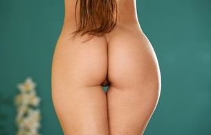 melisa mendiny, sexy girl, hot, nude, naked, ass, butt, buttocks, arse, beautiful body, hips, thighs, gap, pussy, labia, brownette, пиздёнка