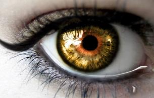 eye, lashes, tear, black