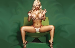 nicole coco austin, blonde, serbian, american, model, starlet, personality, hot, busty, milf, sexy babe, long hair, posing, sitting, bikini, sexy, decollete, spread, legs, high heels, busty, babe, erotic, photoshopped, real celebs wall