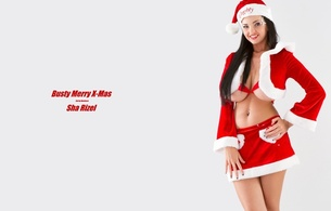 sha rizel, ukrainian, boobs model, personality, brunette, busty, sexy babe, long hair, adult model, holidays, x-mas, santa cap, red, costume, sexy, dressed, smile, minimalist wall, hi-q, own cut