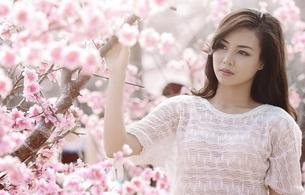asian, bunette, sexy girl, sweet, cute, sakura, spring, blouse, long hair, :)