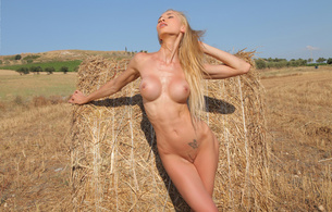 brigitte, blonde, model, full frontal, nude, field, hay, rack, hooters, breasts, boobs, boobies, tits, landing strip, crotch, vagina, snatch, cunt, twat, pussy, outdoors, scenic, artistic, butterfly, tattoo, perfect body