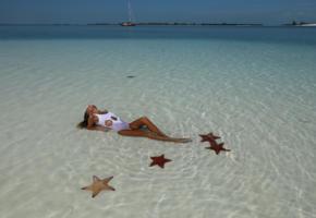 beach, clover, katia clover, mango, mango a, ocean, sea, sexy, starfish, wet