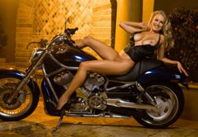 big tits, harley davidson, hi-q, leather vest, motorcycle, semi naked, shanna mclaughlin, trimmed pussy