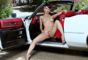 jenna sativa, brunette, car, cadillac, naked, tits, trimmed pussy, labia, ass, spread legs, hi-q