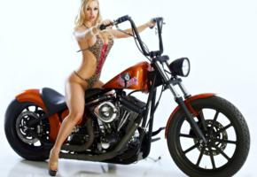 jenny poussin, blonde, swimsuit, non nude, motorcycle, chopper, big tits