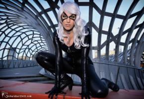 felicia hardy, the black cat, slim, cosplayer, model, posing, tight clothes, shiny, lycra, catsuit, gloves, masked, wig, hi-q, cosplay, fetish babe