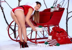 dani daniels, sexy girl, hot girl, santa baby, ass, butt, dani d, legs, heels, christmas, new year