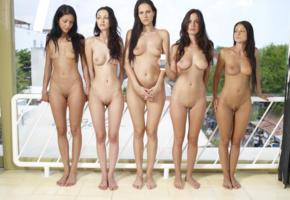 5 girls, brunette, nude, hot, anna aj, brigi, brigitte hunter, carina a, melisa mendiny, melissa mendiny, muriel, suzie, suzie c, suzie carina, zuzana presova, anna s, boobs, tits, shaved pussy, pussy, five, deny moor