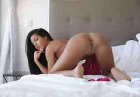 apolonia, apolonia lapiedra, brunette, sexy girl, perfect ass, ass, pussy, doggy, labia, bed, tanned, anus, doggy style, asses up