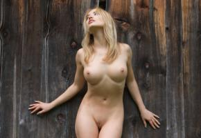 nude, blonde, pussy, boobs, shaved pussy, big tits, tits, unknown