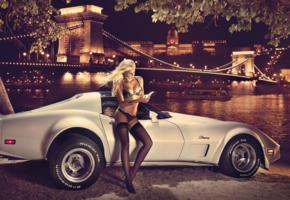 women, car, lingerie, blonde, chain bridge, budapest, night, stockings, panties