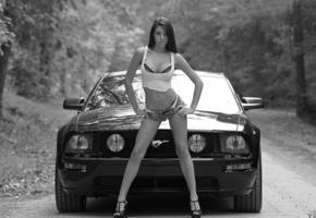 model, unknow, op art, car