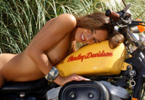 dominika chybova, dominika c, dominica c, dominika, dominika a, brunette, naked, harley davidson, motorcycle, tits, hard nipples, tan, smile, hi-q
