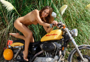 dominika chybova, dominika c, dominica c, dominika, dominika a, brunette, naked, harley davidson, motorcycle, tits, smile, tan, hi-q