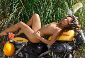 dominika chybova, dominika c, dominica c, dominika, dominika a, brunette, naked, harley davidson, motorcycle, tits, tan, hi-q