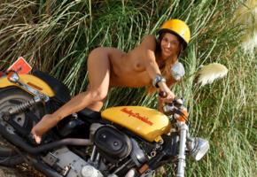 dominika chybova, dominika c, dominica c, dominika, dominika a, brunette, naked, harley davidson, motorcycled, tits, tan, helmet, smile, hi-q